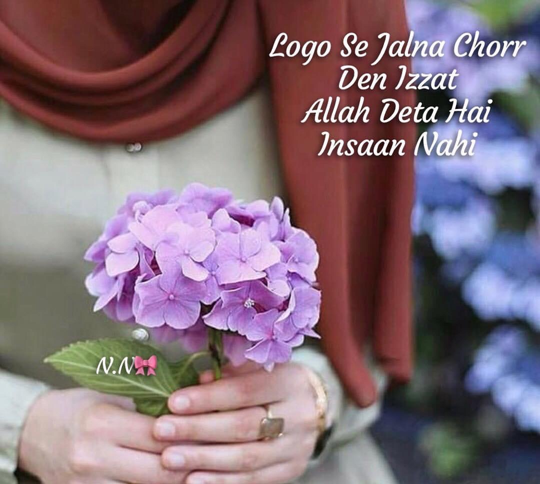 Izzat Allah Deta Hai Picture