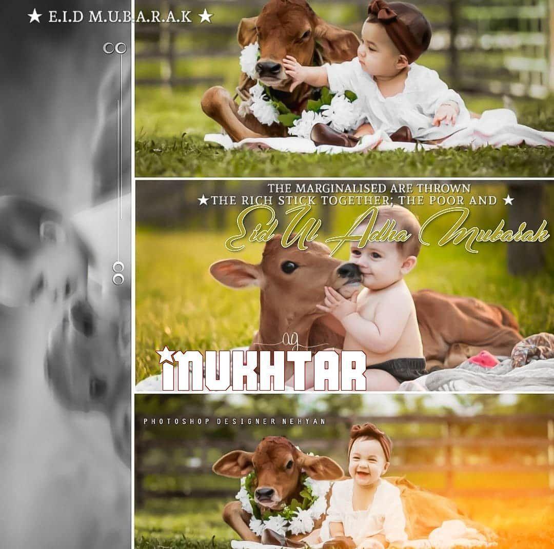 Eid Mubarak Girl Dp For Whatsapp